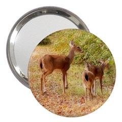 Deer in Nature 3  Handbag Mirror