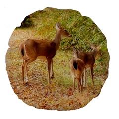 Deer In Nature 18  Premium Round Cushion