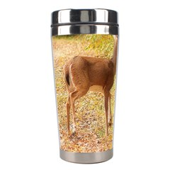 Deer in Nature Stainless Steel Travel Tumbler