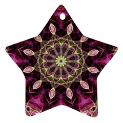 Purple Flower Star Ornament (Two Sides)