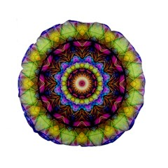 Rainbow Glass 15  Premium Round Cushion