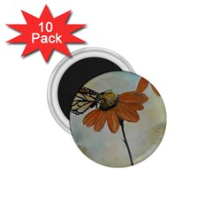 Monarch 1.75  Button Magnet (10 pack)