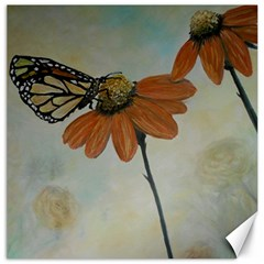 Monarch Canvas 16  X 16  (unframed)