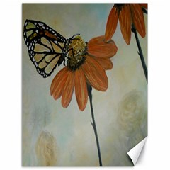 Monarch Canvas 18  x 24  (Unframed)