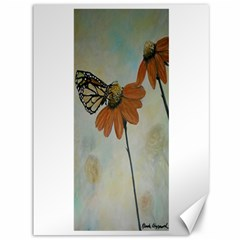 Monarch Canvas 36  X 48  (unframed)