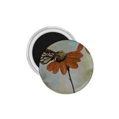Monarch 1.75  Button Magnet