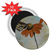 Monarch 2.25  Button Magnet (10 pack)