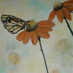 Monarch Canvas 20  X 20  (unframed)