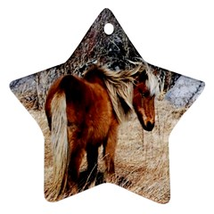 Pretty Pony Star Ornament