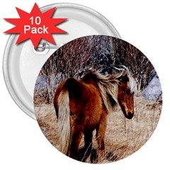 Pretty Pony 3  Button (10 Pack)
