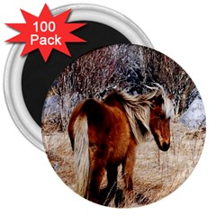 Pretty Pony 3  Button Magnet (100 pack)