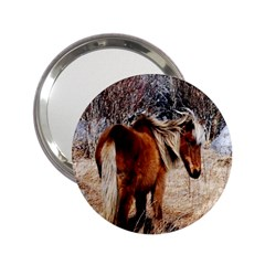 Pretty Pony Handbag Mirror (2.25 )