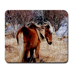 Pretty Pony Large Mouse Pad (Rectangle)