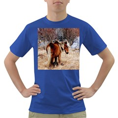 Pretty Pony Men s T Shirt (colored)