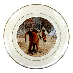 Pretty Pony Porcelain Display Plate