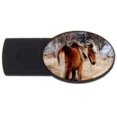 Pretty Pony 4gb Usb Flash Drive (oval)