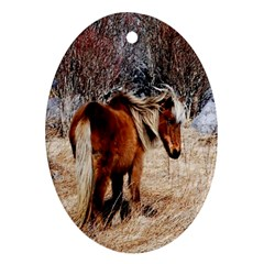 Pretty Pony Oval Ornament (Two Sides)
