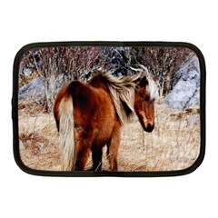 Pretty Pony Netbook Sleeve (medium)