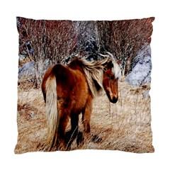 Pretty Pony Cushion Case (two Sided)