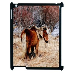 Pretty Pony Apple iPad 2 Case (Black)