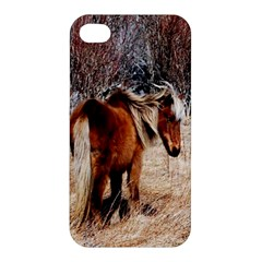 Pretty Pony Apple Iphone 4/4s Hardshell Case