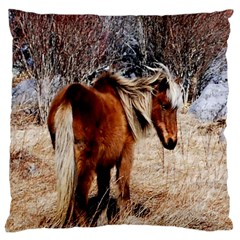 Pretty Pony Large Cushion Case (Two Sided)