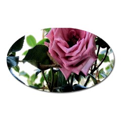 Rose Magnet (Oval)