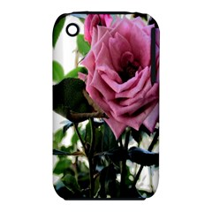 Rose Apple iPhone 3G/3GS Hardshell Case (PC+Silicone)