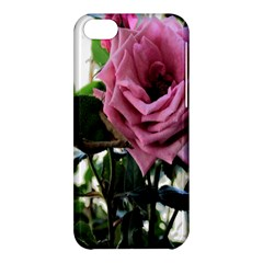 Rose Apple iPhone 5C Hardshell Case