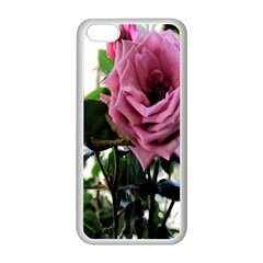 Rose Apple Iphone 5c Seamless Case (white)