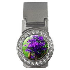 Purple Flowers Money Clip (CZ)