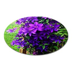Purple Flowers Magnet (oval)