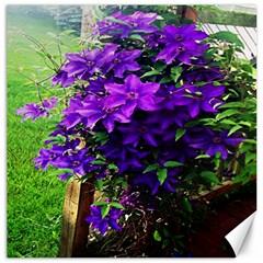 Purple Flowers Canvas 20  X 20  (unframed)