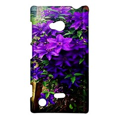 Purple Flowers Nokia Lumia 720 Hardshell Case