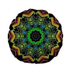 Big Burst 15  Premium Round Cushion