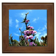 Pink Flower Framed Ceramic Tile