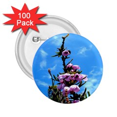 Pink Flower 2 25  Button (100 Pack)