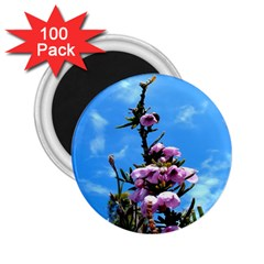 Pink Flower 2.25  Button Magnet (100 pack)