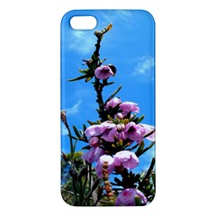 Pink Flower Iphone 5s Premium Hardshell Case
