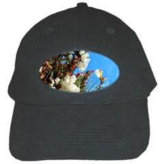 Australia Flowers Black Baseball Cap