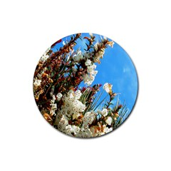 Australia Flowers Drink Coasters 4 Pack (Round)