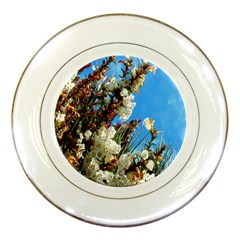Australia Flowers Porcelain Display Plate