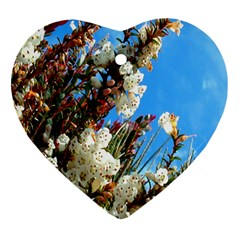 Australia Flowers Heart Ornament (two Sides)