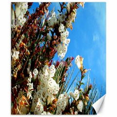 Australia Flowers Canvas 8  x 10  (Unframed)