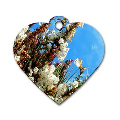 Australia Flowers Dog Tag Heart (two Sided)