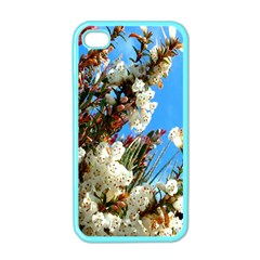 Australia Flowers Apple Iphone 4 Case (color)