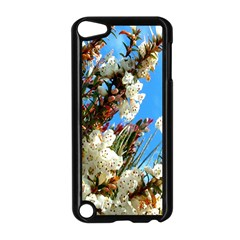 Australia Flowers Apple iPod Touch 5 Case (Black)