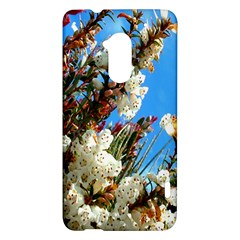 Australia Flowers HTC One Max (T6) Hardshell Case