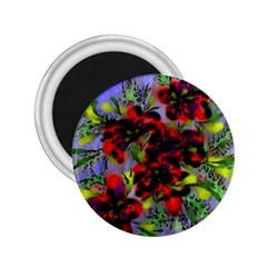 Dottyre 2.25  Button Magnet