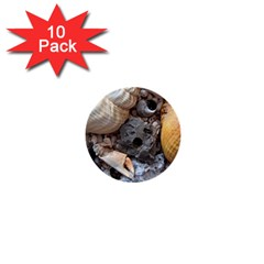 Beach Treasures 1  Mini Button (10 pack)